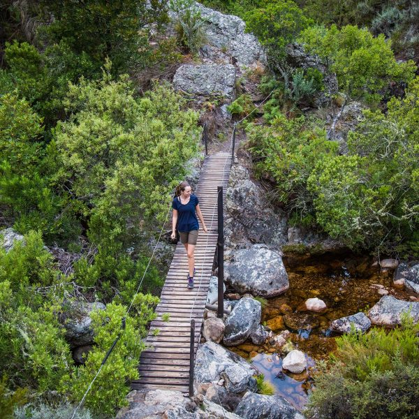 Crossing a wooden bridge during a Franschhoek mountain hike