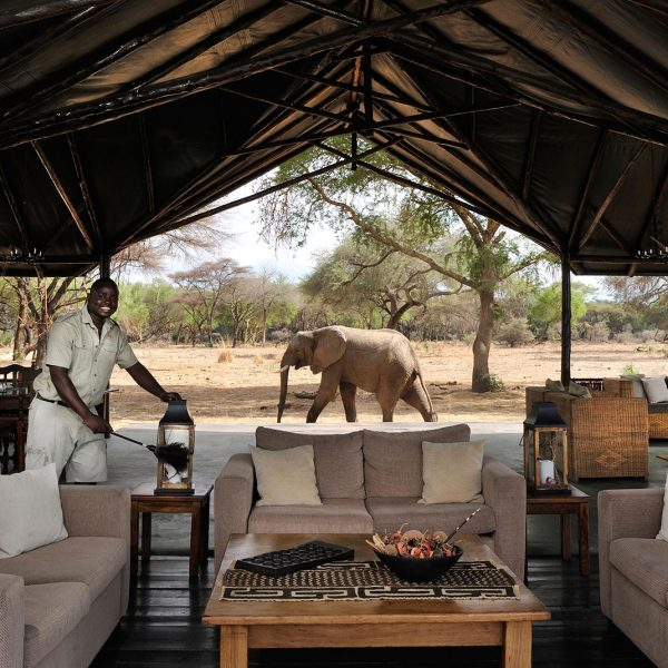 The main area at Old Mondoro is open to the elements and the wildlife