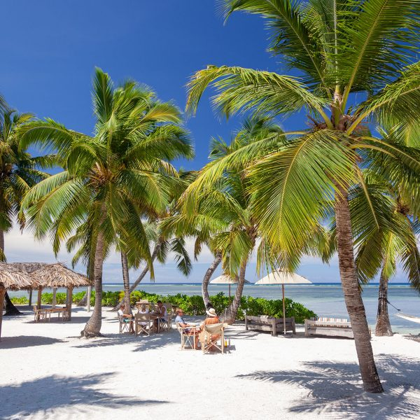 Lunch is served under the palm trees on the white sand of the beach restaurant - Blue Safari Seychelles