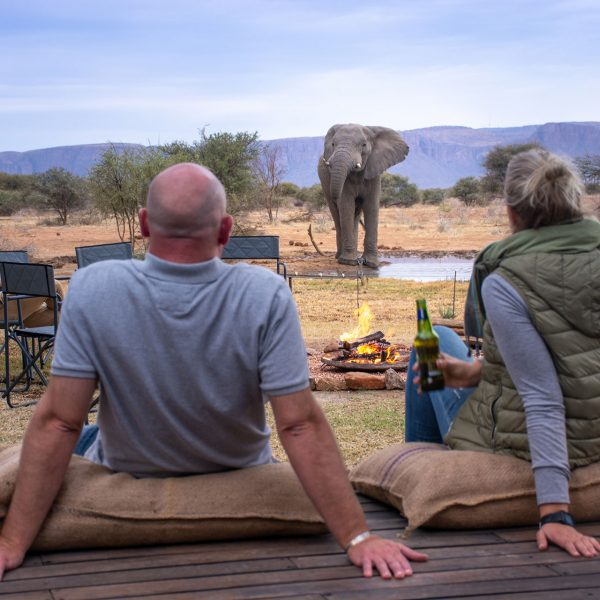 Guests sit on the deck at Explorers Camp enjoying a drink while an elephant enjoys his own drink from the waterhole