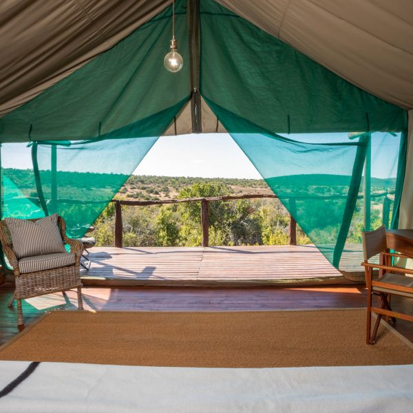 view from a bed at Galpin looking out of the front tent and looking over the reserve