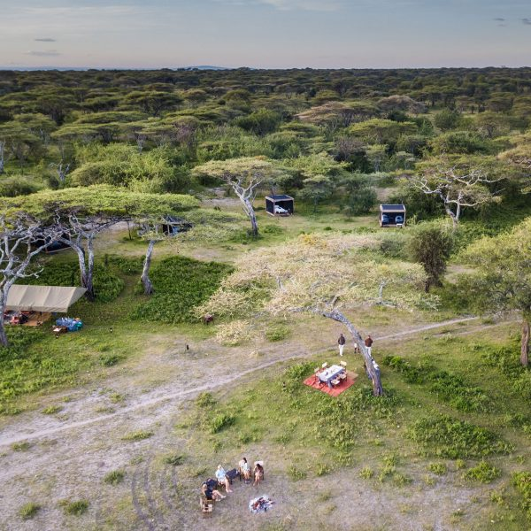 An aerial view of the Flycamp setup at Mwiba Lodge