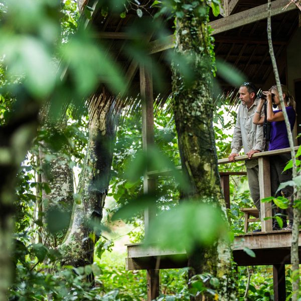 Guests look out off their balcony at Mboko Camp